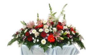 Dessus de Cercueil 14