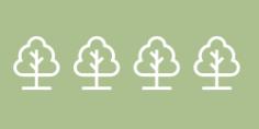 5435 arbres plantés par le groupe Caton